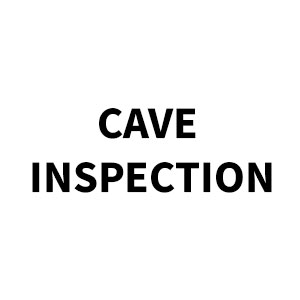 CAVE-INSPECTION